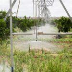 Il sistema di irrigazione